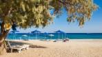 Stafilia Beach Hotel foto 10
