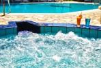 Arion Renaissance Hotel foto 10