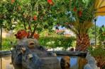 Garden Palace Hotel foto 6