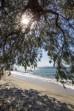 Aeolos Beach Hotel foto 68
