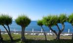 Dimitra Beach foto 29