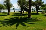 Delfinia Hotel foto 3