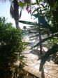 Almiros - ostrov Korfu foto 9