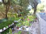 Nissaki - ostrov Korfu foto 4