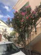 Město Lefkada (Lefkas) - ostrov Lefkada foto 2