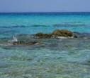 Pláž Mega Portokali - Chalkidiki (Sithonia) foto 11