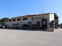 Lisovna a muzeum Aristeon
