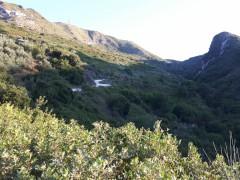 Hora Skopos