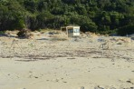 Pláž Marathonisi - ostrov Zakynthos foto 7