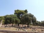 Olympie - Tipy na výlet Zakynthos foto 35