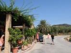 Vinařství Callinico - Kalipado - ostrov Zakynthos foto 9