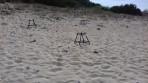 Pláž Marathonisi - ostrov Zakynthos foto 20