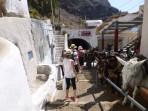 Město Fira - ostrov Santorini foto 18