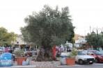 Psinthos - ostrov Rhodos foto 20