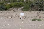 Pláž Kalamos - ostrov Rhodos foto 5