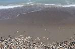 Pláž Kamiros - ostrov Rhodos foto 8