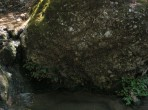 Údolí motýlů (Petaloudes) - ostrov Rhodos foto 8