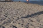 Pláž Kokkinogia - ostrov Rhodos foto 20