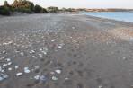 Pláž Lachania - ostrov Rhodos foto 5