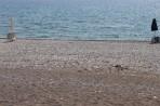 Pláž Massari (Masari) - ostrov Rhodos foto 3