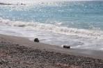 Pláž Paleochora - ostrov Rhodos foto 20