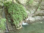 Údolí motýlů (Petaloudes) - ostrov Rhodos foto 17