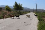 Příroda na ostrově Rhodos foto 6