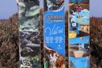 Akvárium Rhodos - ostrov Rhodos foto 8